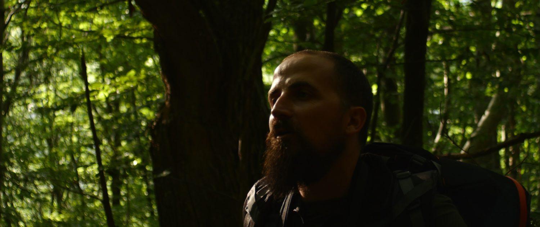 Nel fitto della foresta