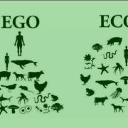 ego-eco-1